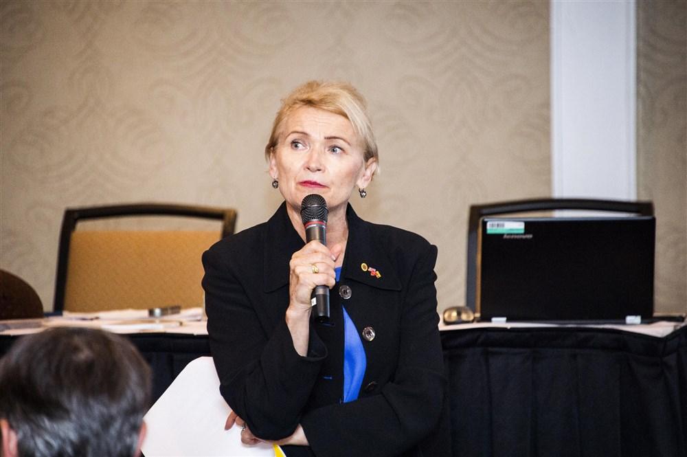 JAV LB krašto valdybos pirmininkė S. Šimkuvienė pristatė Valdybos veiklą